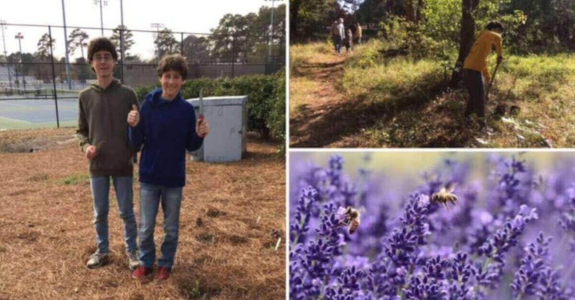 Due adolescenti hanno costruito 20 km di giardini per aiutare a salvare le api